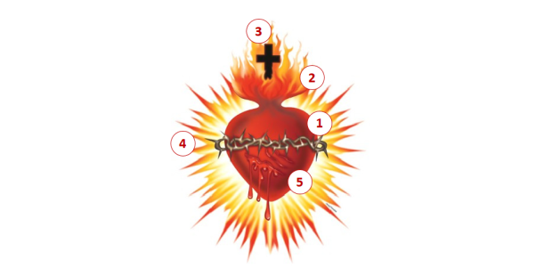 O significado dos 5 símbolos presentes no desenho do Sagrado Coração de Jesus